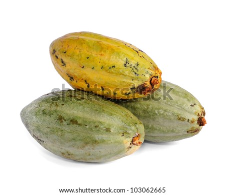 cacao fruits isolated against white background. selective focus. - stock photo