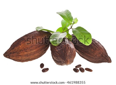 Cacao pods and beans with leaves isolated on white background