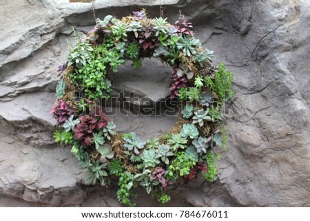 Cactus flower wreath on stone wall