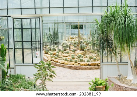 Cactus glasshouse plant botanical garden landmark (Queen Sirikit botanical garden, Chiang Mai, Thailand) - stock photo