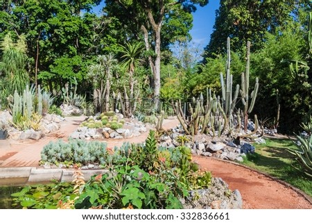 Cactus section of botanical garden in Rio de Janeiro, Brazil - stock photo