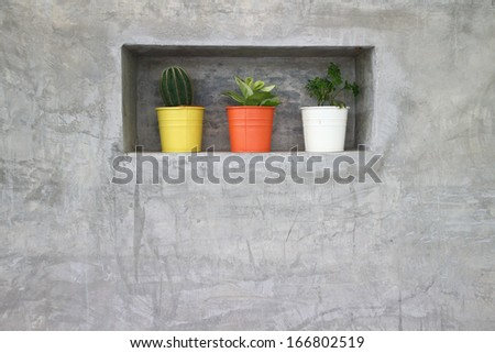 Cactus with flowers in vase an old plaster wall - stock photo