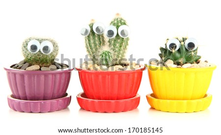 Cactuses in flowerpots with funny eyes, isolated on white  - stock photo