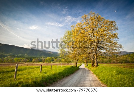 Cade's Cove Dirt Road Hyatt Lane on Spring Morning in Great Smoky Mountains National Park - stock photo