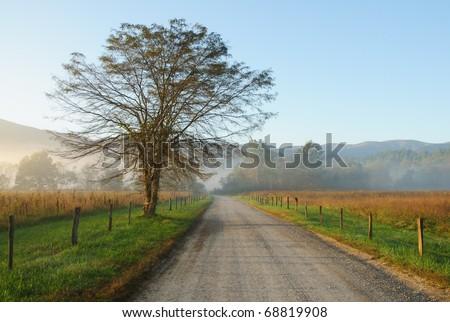 Cades Cove road in fog at sunrise - stock photo