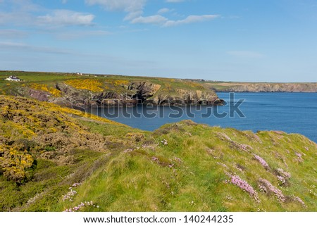 Caerfai Bay Wales UK near St Davids and in the Pembrokeshire Coast National Park.   The Pembrokeshire Coast Path passes alongside the bay