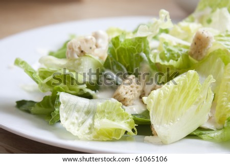 caesar salad sat on a kitchen table indoors with natural lighting - stock photo