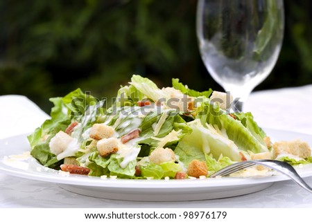 Caesar Salad, served in a garden setting.  Healthy al fresco dining. - stock photo
