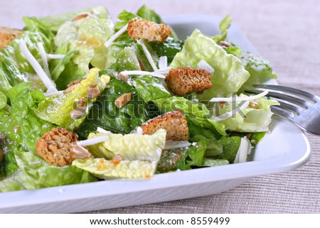 Caesar salad with cheese and croutons - stock photo