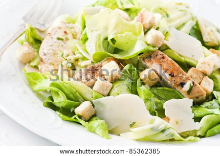 Caeser Salad with chicken and parmesan - stock photo