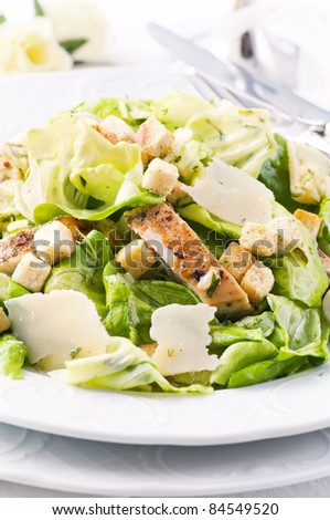Caeser Salad with parmesan and chicken - stock photo