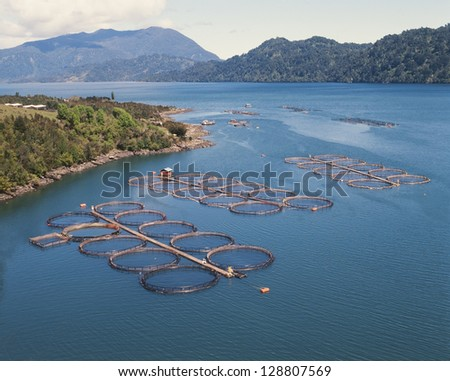 cage salmon farm in southern Chile - stock photo
