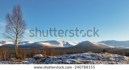 Cairngorms at sundown in December 2014. This is a view of part of the Cairngorm Mountains in the last of the sun on December afternoon 2014. - stock photo