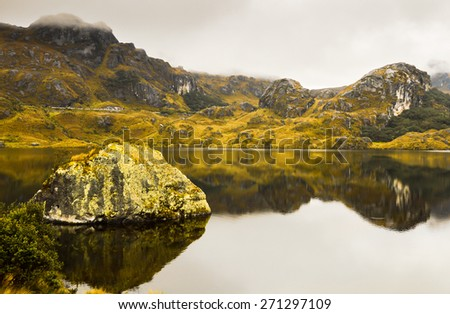 Cajas National Park in Ecuador, Cuenca district. Amazing landscapes of andean highlands, with many valleys ,lakes, creeks,difficult trails covered with haze most of the time. Not many tourists. Lamas. - stock photo