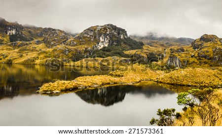 Cajas National Park in Ecuador, Cuenca district. Amazing landscapes of andean highlands, with many valleys ,lakes, creeks,difficult trails covered with haze most of the time. Not many tourists.  - stock photo