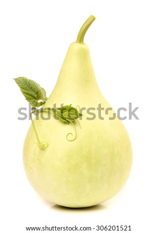 Calabash, Bottle Gourd on white background  - stock photo