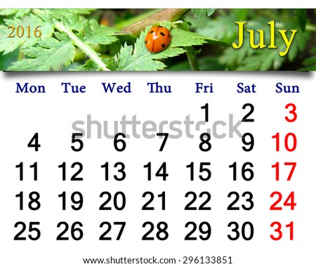 calendar for July 2016 with ribbon of ladybirds on the white camomile - stock photo