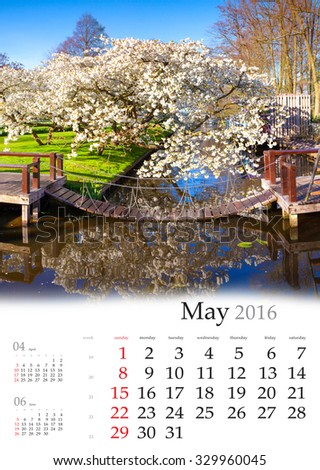 Calendar 2016. May. Colorful spring landscape in the city park with blossom sakura tree. - stock photo