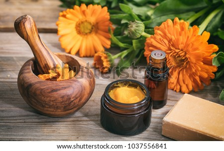Calendula products. Essential oil, ointment and a mortar on a wooden table, fresh blooming calendula background,