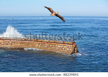 California Brown Pelican in Flight With Waves Crashing On Coastal Sea Wall With Fishing Boat In Background ~ Pelecanus Occidentalis - stock photo
