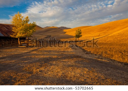 California farm land scene with rolling grassland / pasture hills and a path leading into the distance in early evening warm sunlight. - stock photo