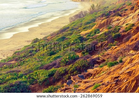 California Green and Sandy Ocean Shore. Beach Plants and Flowers. California, United States.  - stock photo