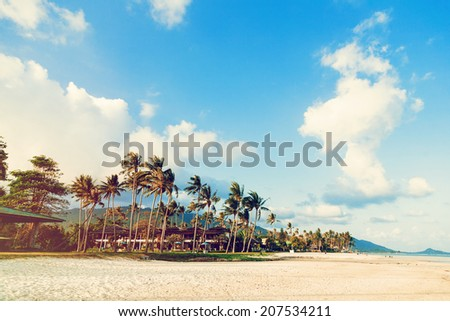 California , nice sunny day, exotic beach with palms and blue sky. Vintage Instagram colors. - stock photo