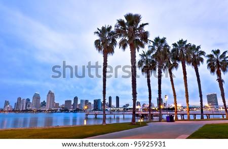 California Palm Trees and City of San Diego, California USA - stock photo