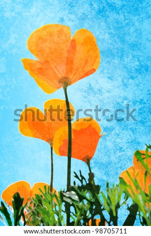 California Poppies on a bright sunny day with grunge style texture - stock photo