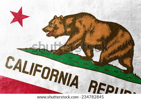 California State Flag painted on leather texture - stock photo