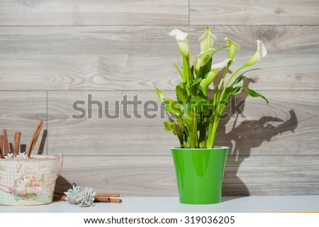 Calla in green vase on the small table decorates living room - stock photo
