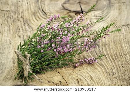 Calluna vulgaris (common heather) flowers on wooden surface - stock photo