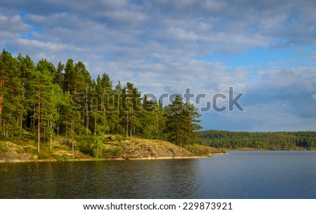 calm lake in the summer day