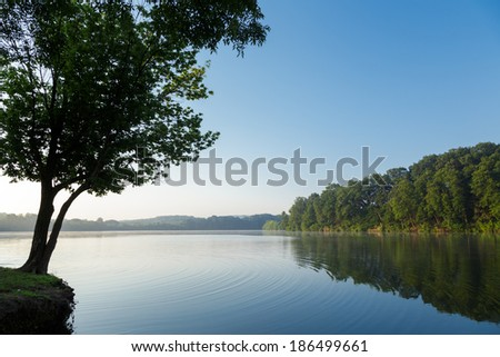 Calm lake reflecting trees on a clear summer morning - stock photo