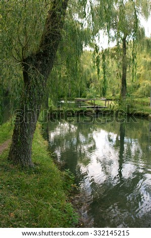 Calm pond with willows and reflection. Focus on front branches.