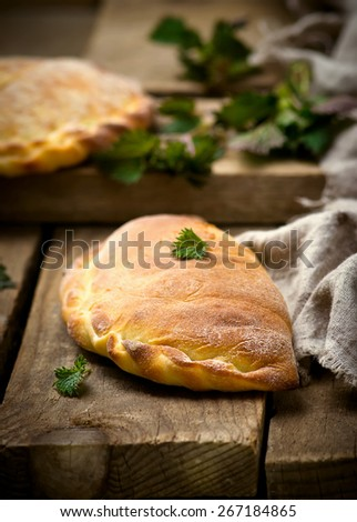 calzone with ricotta  and  nettle. style rustic. selective focus