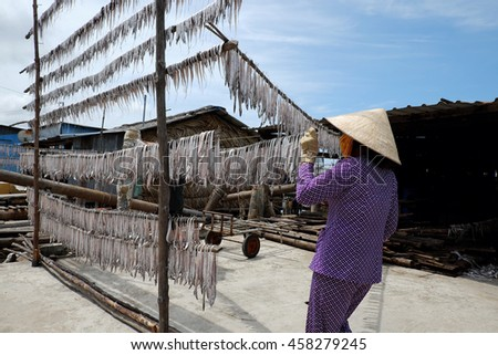 CAMAU, VIET NAM- JULY 16, 2016: Vietnamese woman dry seafood at Ca Mau fishing village, Mekong Delta. Dried fish is popular Vietnam food, can store for long time