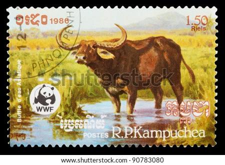 CAMBODIA - CIRCA 1986: A stamp printed by CAMBODIA shows wild cow, series animals, circa 1986 - stock photo