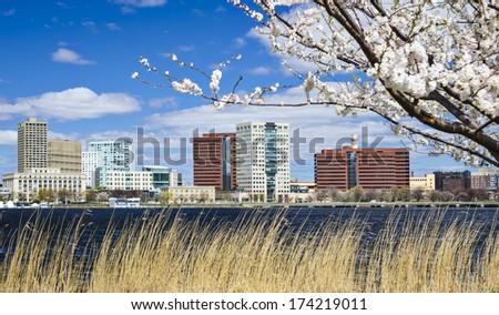 Cambridge, Massachusetts skyline in the spring. - stock photo