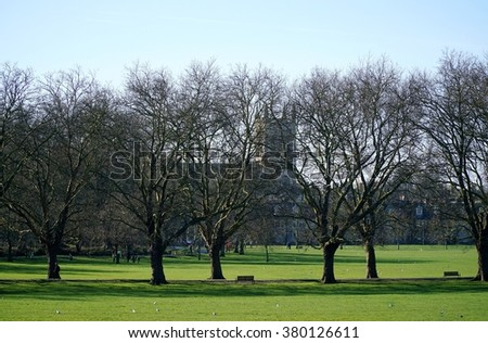 CAMBRIDGE, UK - FEBRUARY 16 2016: People cross Jesus Green, a public park in Cambridge, England, on a sunny winter day. St Clement's Church is visible behind an avenue of leafless plane trees.