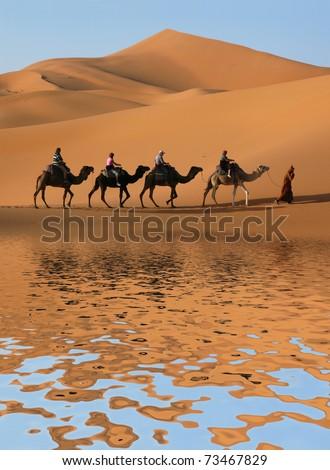 Camel caravan going along the lake the Sahara Desert, Morocco. - stock photo