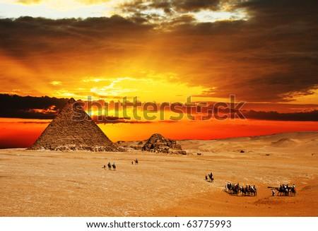 Camel caravan going through desert in front of pyramid at sunset. - stock photo