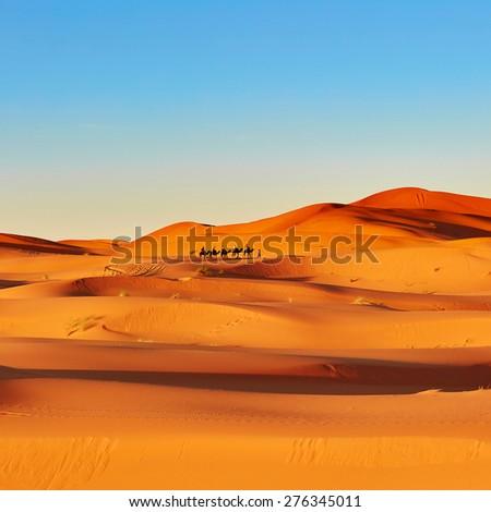 Seif dunes in sahara desert