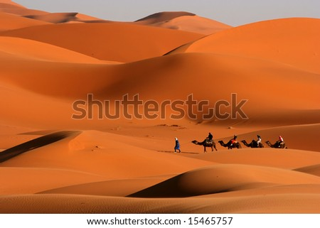 Camel Caravan on Africa s desert - stock photo