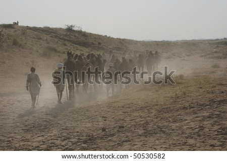 camel caravan on the desert, Rajastan, India - stock photo