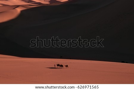 Camel caravan passing sand Desert near the Dunhuang, China,
