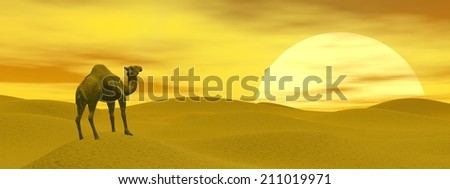 Camel standing in the desert by sunset - 3D render - stock photo