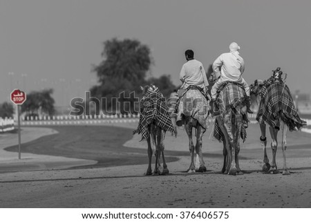Camels and two riders stopped at stop sign. Near Dubai, United Arab Emirates - stock photo
