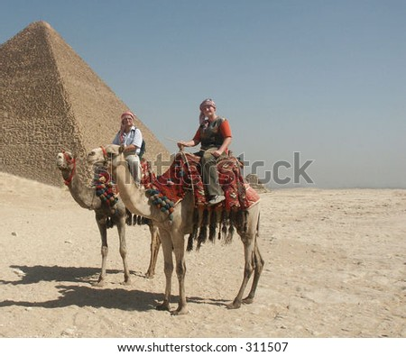 Camels near Cheops