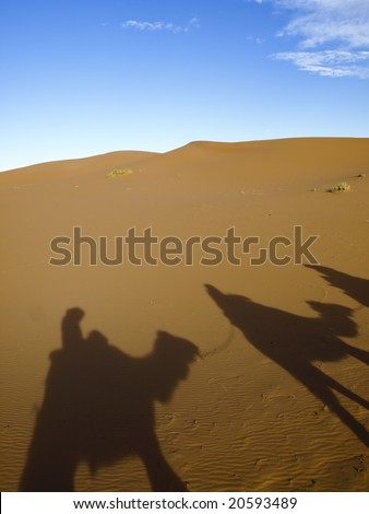 Camels silhouettes in Erg Chebbi's desert - Morocco - stock photo